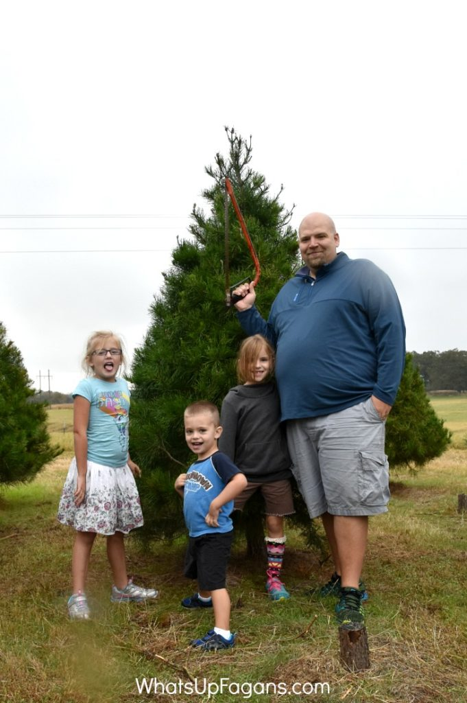 Christmas Traditions for Family - How this one things will lead to a better Christmas Holiday - Real Christmas Tree