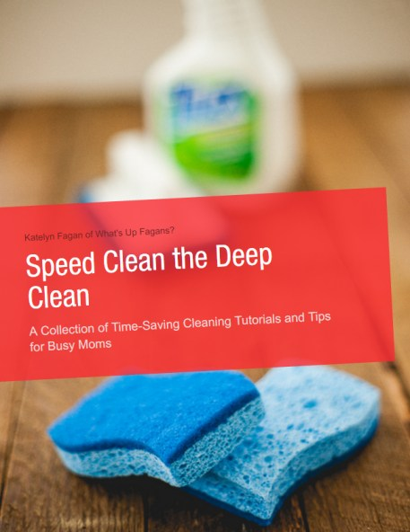 Speed Clean the Deep Clean Book Cover
