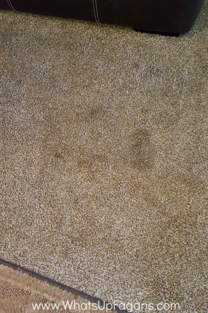 older carpet stains