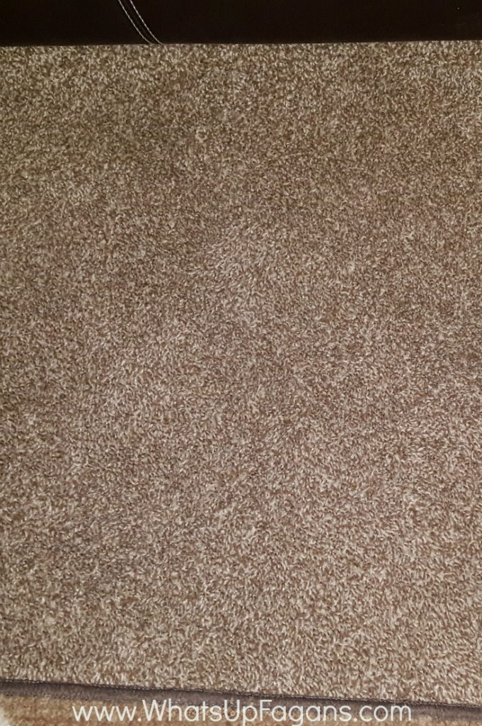 stain treating old carpet stains