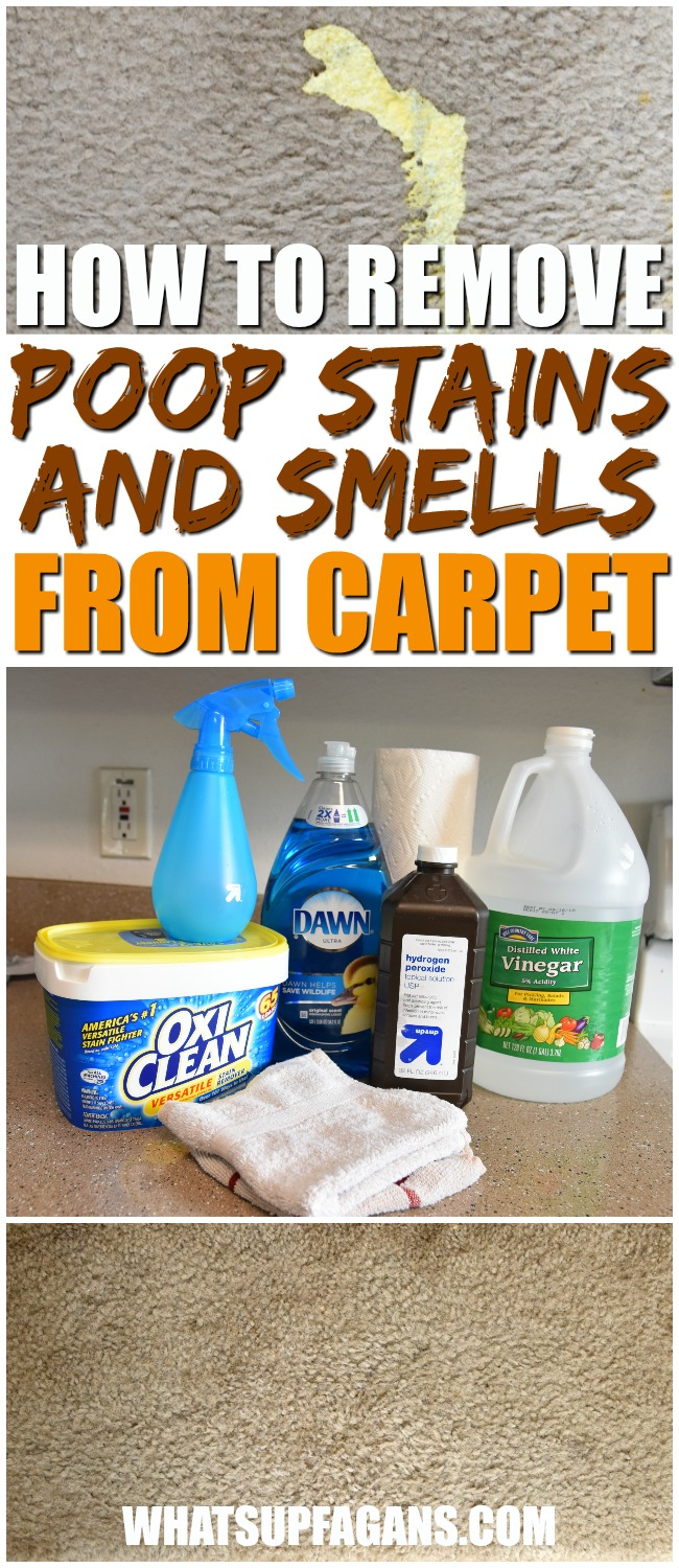 Remove Baby Poop Stains and Smells from Carpets with this