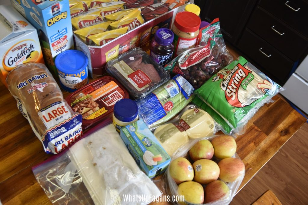 Foods to pack for family road trip