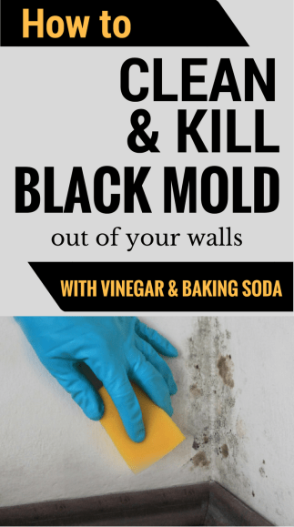 How to clean and kill black mold out of your walls with vinegar and baking soda.