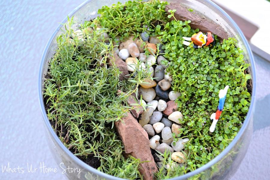 Miniature Garden Terrarium
