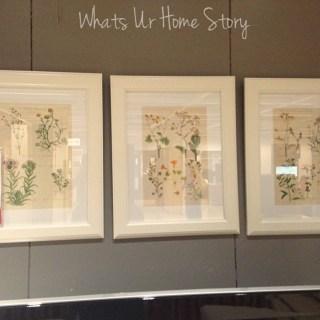 Whats Ur Home Story: Botanical prints IKEA