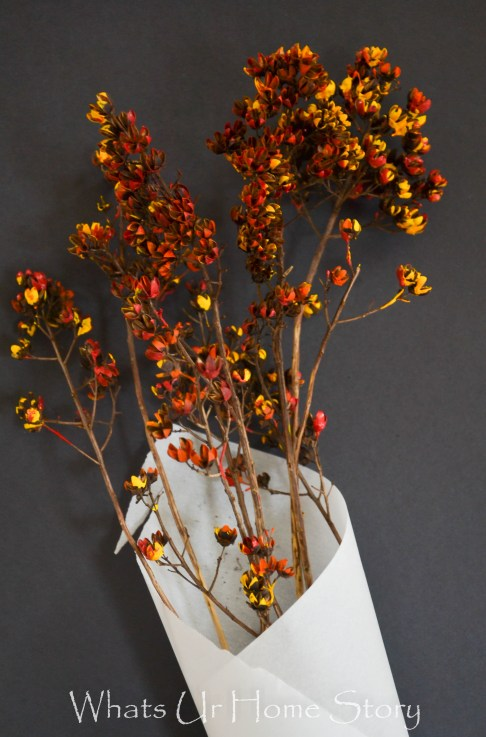 Painted Dried Flowers