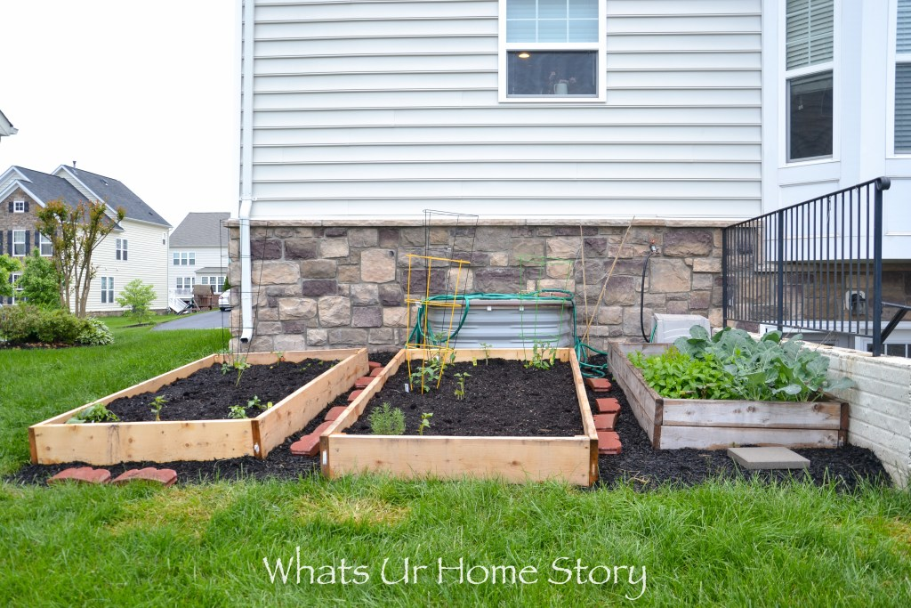 Vegetable Garden Beds Galore