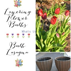 Pinspiration 15th   Garden Planters