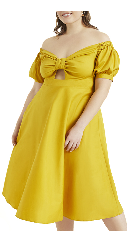 Off the Shoulder Cinched Fit and Flare Dress.