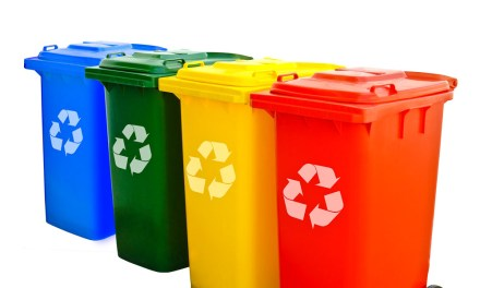 Choosing a suitable recycling bin