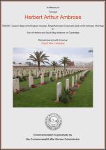 CWGC Certificate for Herbert Arthur Ambrose
