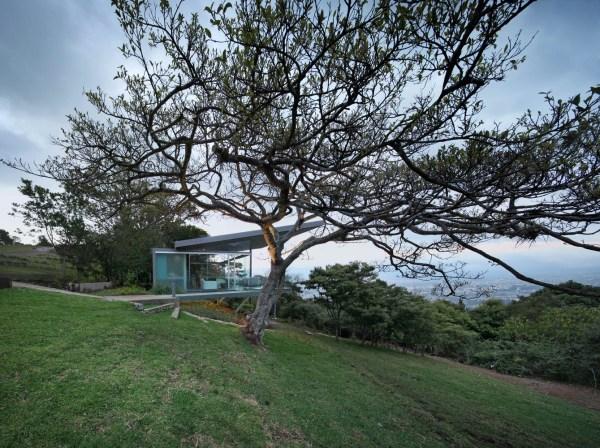 Estancia y Ficus, Costa Rica