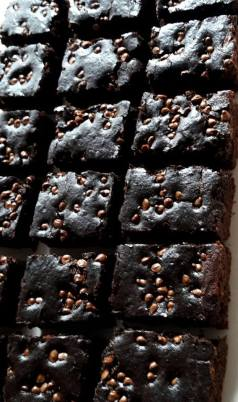 chocochip brownie 1