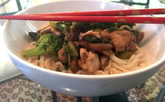 Ginger Chicken Stir Fry Over Shirataki Noodles for prebiotic fibers
