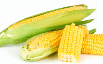 Some things you might not know about corn