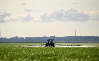 Is glyphosate the REAL problem in wheat?