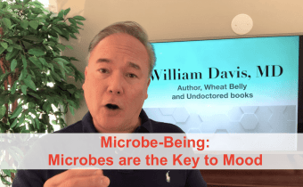 Microbe-Being: Microbes and Mood