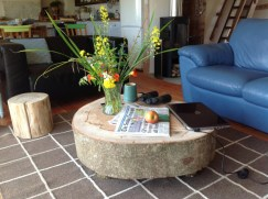 Coffee table from a storm-felled tree