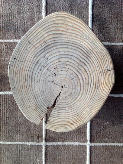 stool in Balebarn eco lodge