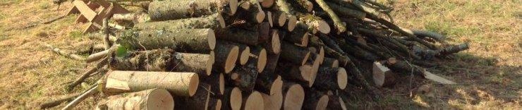 Woodpile at Wheatland Farm Eco Lodges