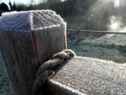 Frosty gate at Wheatland Farm's Devon Eco Lodges