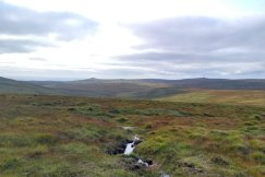 Looking back at the High Moor