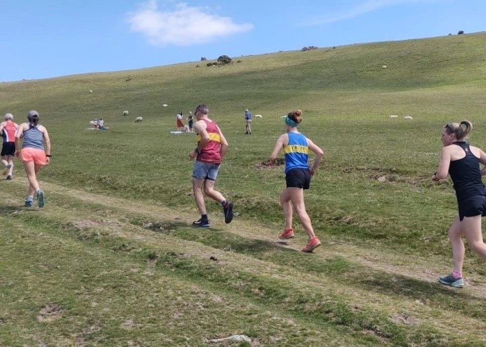 Shows runners on a Dartmoor track