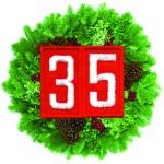 NEW T35 Wreath Logo