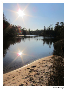 Late afternoon at Blackwater River