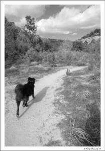 Hiking Mule Canyon