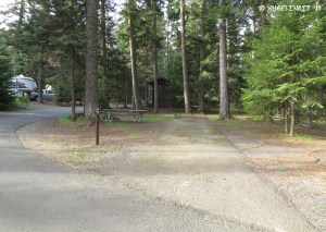 """Typical site view. This is a non-hookup (""""tent"""") site A5"""