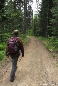 """Hiking on the """"unofficial"""" hiking trails"""