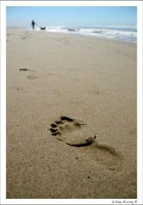 Just a footstep in the sand