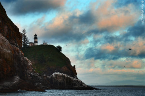 A very pink sunset over Cape Disappointment Lighthouse