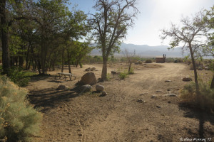 """View near beginning of campground. This """"loop"""" has ~12 sites in it. Site on left is #12"""