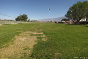 View of pasture where groups can camp. They will run-out electric here.