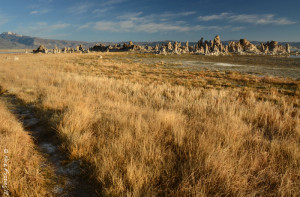 One of the many trails to the tufa's