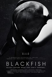 Documentary about veganism: Blackfish