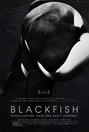 Kijktip: Blackfish