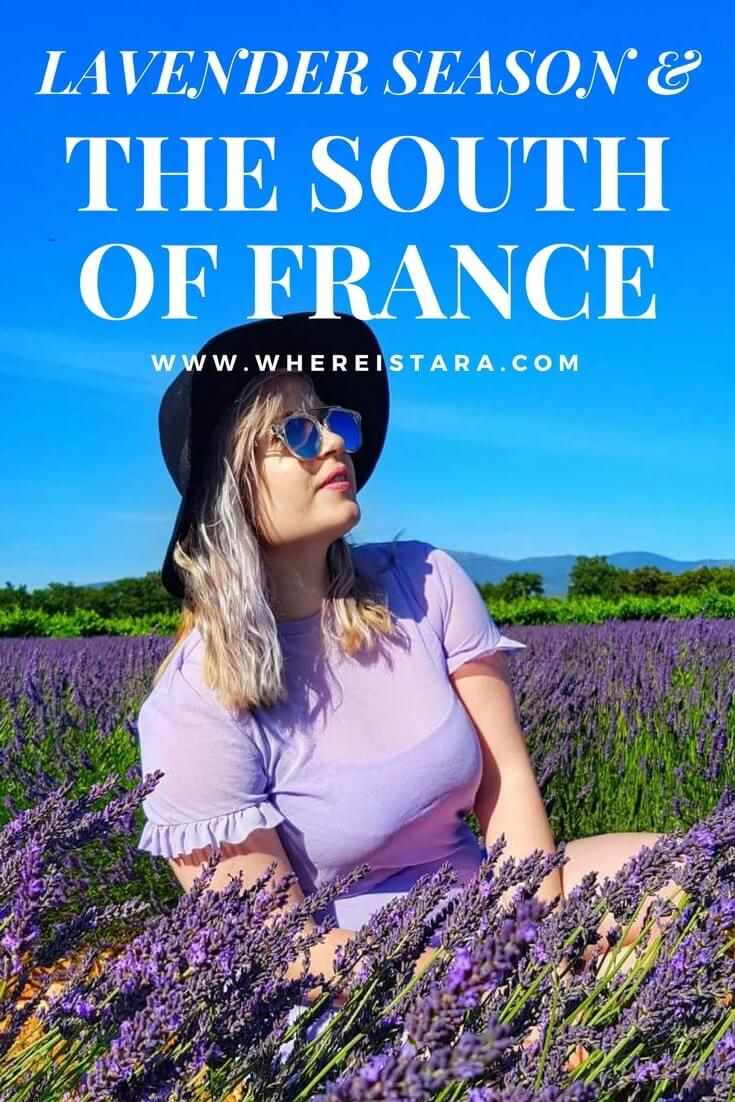 lavender season in provence south of france valreas