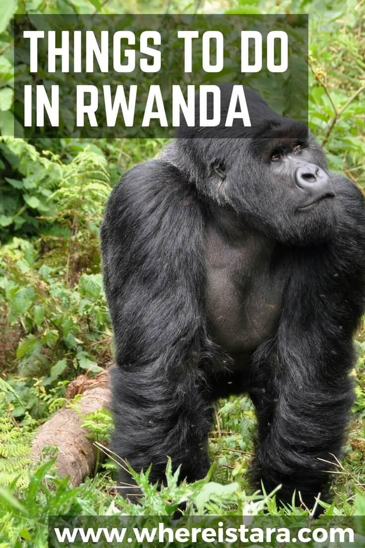 things to do in RWANDA where is tara povey top irish travel blogger