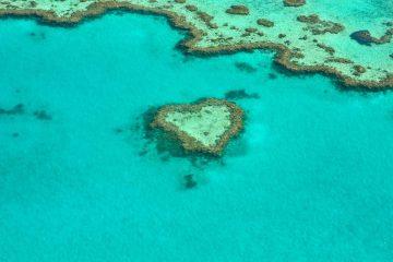 great barrie reef things to see in australia