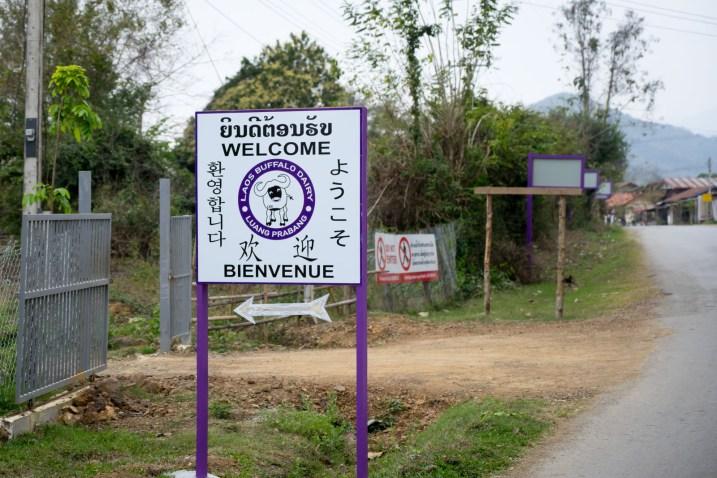 Things to do in Luang Prabang-01110