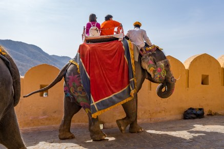 What To Do In Jaipur with Kids-01816