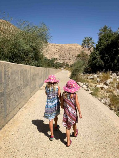 Wadis in Oman-5045