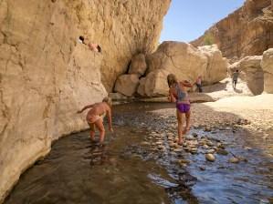 Wadis in Oman-5120