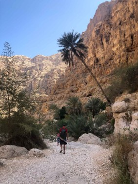 Wadis in Oman-5326
