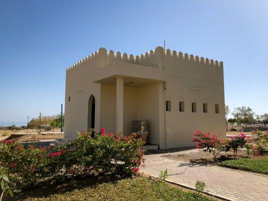 Wadis in Oman-5436