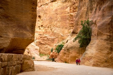 Petra with Kids-00018