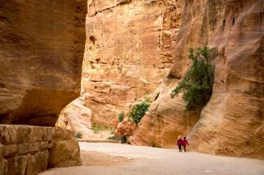 Petra with Kids-00018